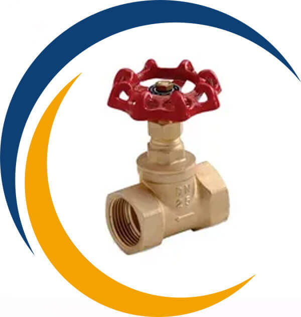 Cupro Nickel 70-30 Cryogenic Globe Valve