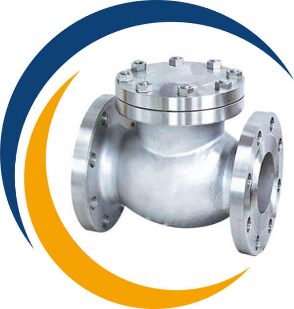 Stainless Steel 304L Check Valve