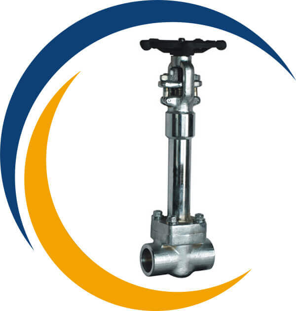 Stainless Steel 304L Cryogenic Gate Valve